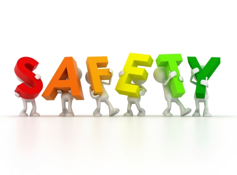 iStock_Bear-Safety-000018039831Medium